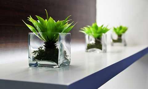 clear cube vases on an office shelf.